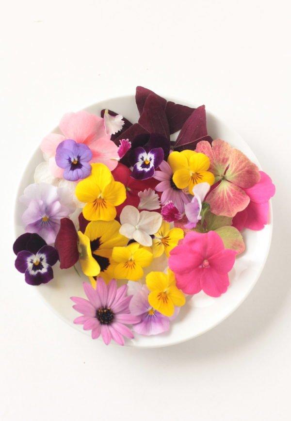 Paletas de flores